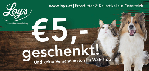 Cashback Aktionsgutschein Layout